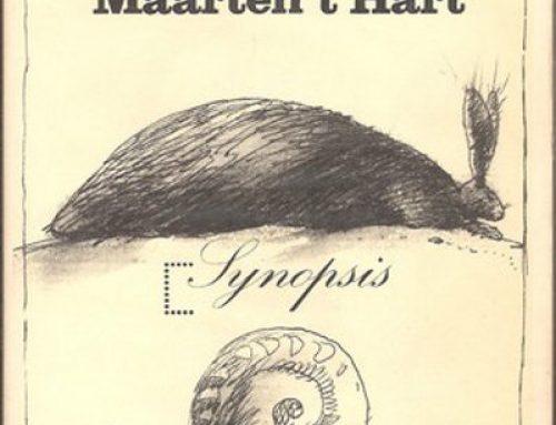 De som van misverstanden – Maarten 't Hart